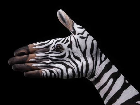 Zebra-on-black1-453x340